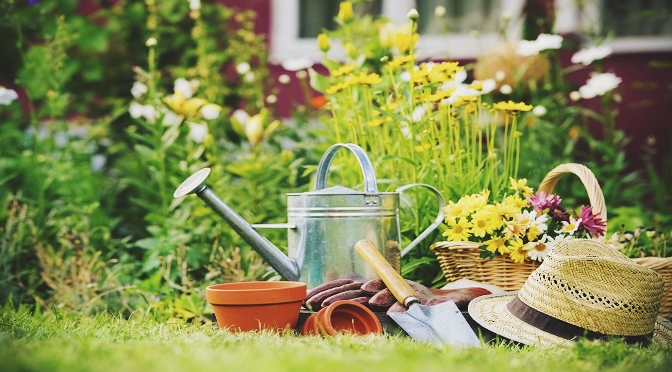 Four Reasons Why Gardening Is Beneficial To Your Body