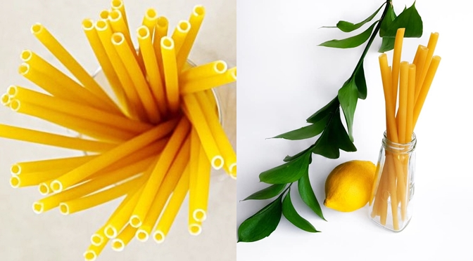 Stroodles – The First Eco Friendly Straws Are Here